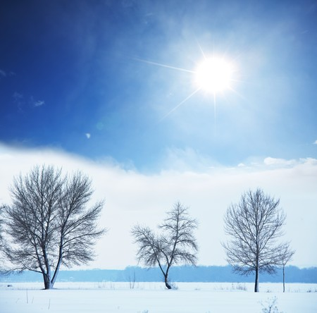 Winter background Stock Photo - 7764259