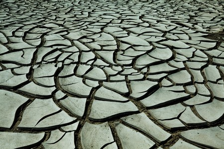 Drought land Stock Photo - 8230769