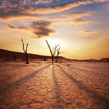 Dead valley in Namibia Imagens