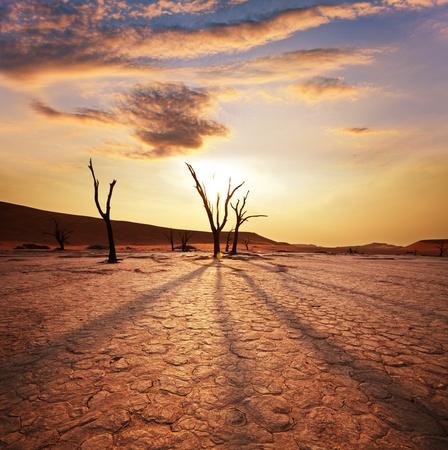 Vallée de la morte en Namibie Banque d'images - 8554344