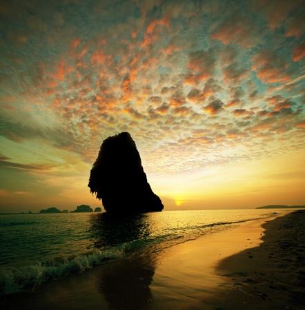 Tropical beach Stock Photo - 8964575