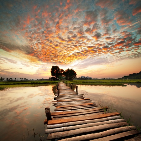 熱帯川に沈む夕日