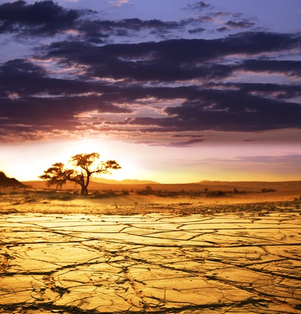 drought: Valle muerto en Namibia Foto de archivo