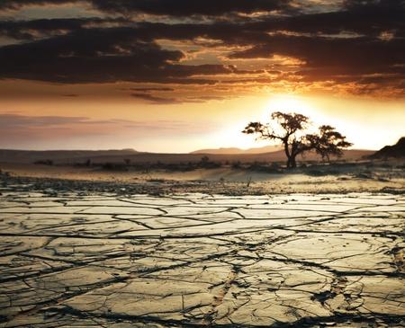 desert landscape: Gobi desert Stock Photo