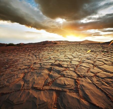 dryness: drought land