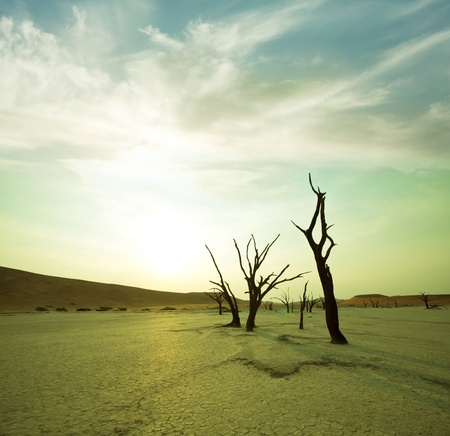 Dead valley in Namibia Stock Photo - 9248064