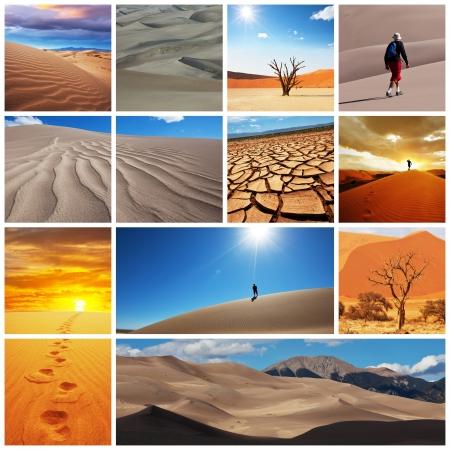 hummock: Gobi desert Stock Photo