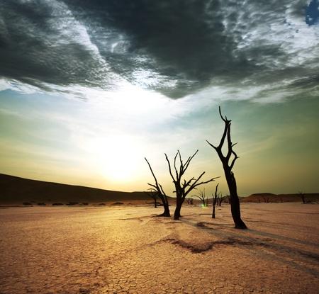 sequ�a: Valle muerto en Namibia Foto de archivo