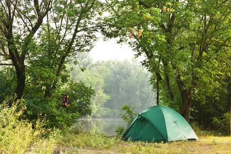 camping equipment: Tent in summer forest