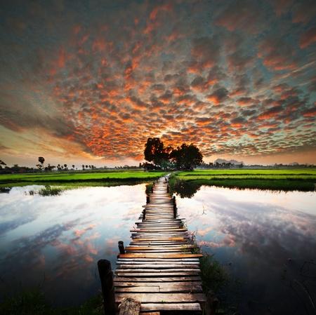 열대 강에서 산책로 스톡 콘텐츠 - 9668438