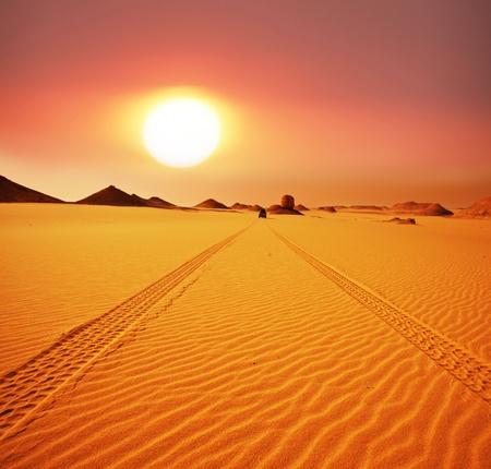 Desierto Foto de archivo - 9795098