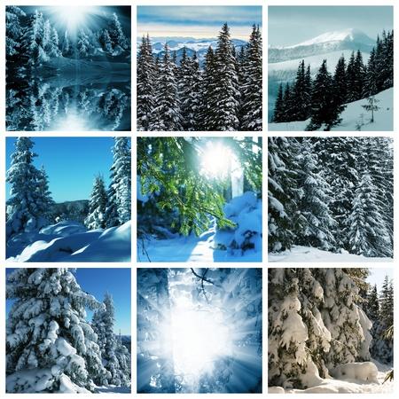 enero: Collage de invierno Foto de archivo