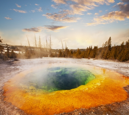 yellowstone: Morning Glory Pool