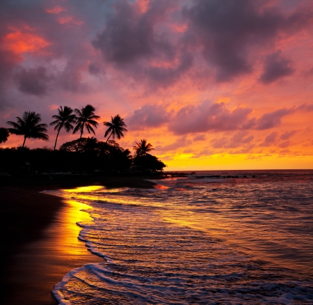 hawaii sunset: Tropical beach Stock Photo