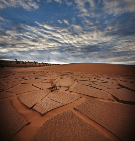 drought land Stock Photo - 9795246