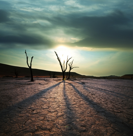 Dead valley in Namibia Stock Photo - 10561520