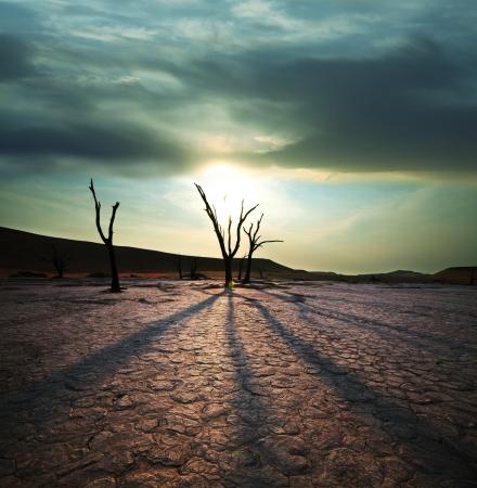 sequias: Valle muerto en Namibia Foto de archivo