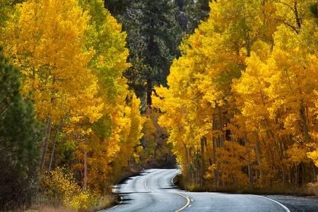 sierra: autumn in Sierra Nevade Stock Photo