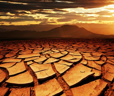 Drought land Stock Photo - 10603935