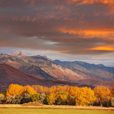 nevada: autumn scene