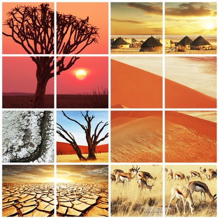african landscapes collage photo