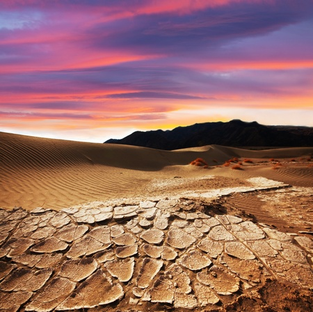 drought land Stock Photo - 11260732