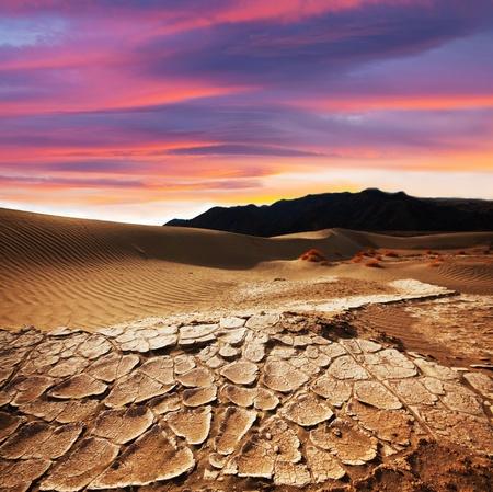 drought land Stock Photo - 11260732
