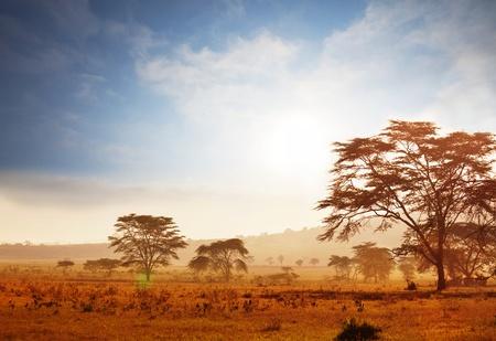 Namibian  landscapes Stock Photo