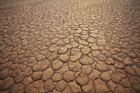 Drought land Stock Photo - 11377291