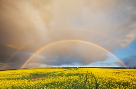 Rainbow on Hawaii Stock Photo - 11641060