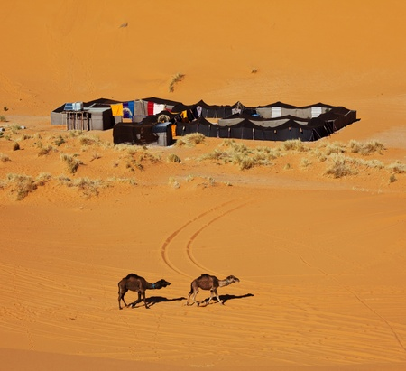 The bedouins camp in  Sahara, Morocco photo
