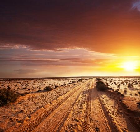 desierto del sahara: camino en el desierto del Sahara