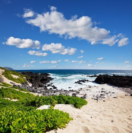 Oahu island photo