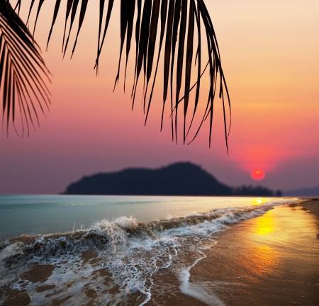 ocean sunset: Tropical beach Stock Photo