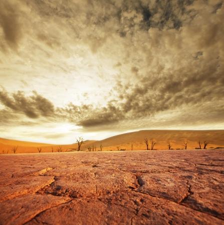 nieużytki: Martwy dolina w Namibii