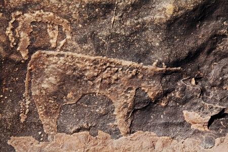 pintura rupestre: petroglifo en Marruecos