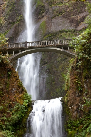 oregon cascades: Multnomah Falls in Oregon