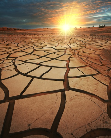 cracked earth: drought land