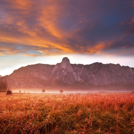 serenity morning meadow in Yosemite Stock Photo