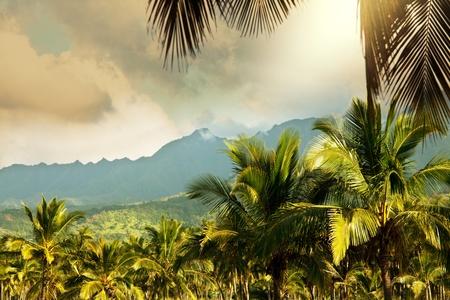 cpo: Hawaiian landscapes
