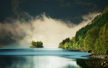 mystical forest: fog on lake