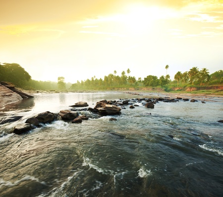 tropical river photo