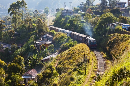 forest railroad: railroad on Sri Lanka Stock Photo