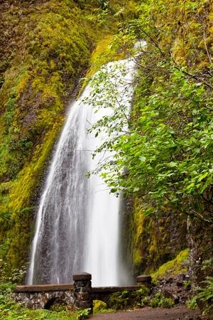 Multnomah Falls in Oregon photo