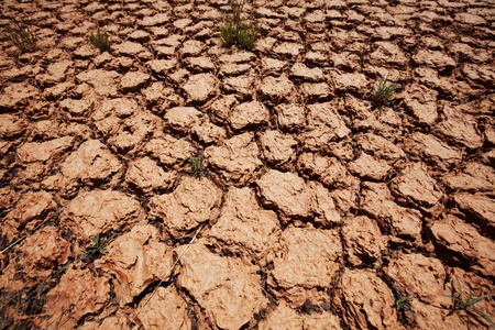 Drought land Stock Photo - 13611490