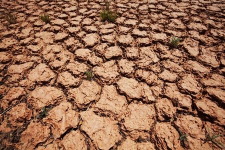Drought land Stock Photo - 13611490