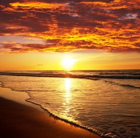 sea sunset (sunset, beach, hawaii)