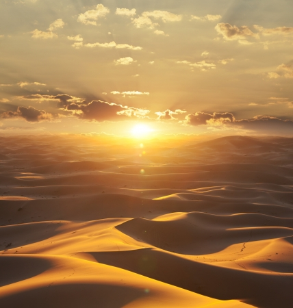 Sahara desert photo