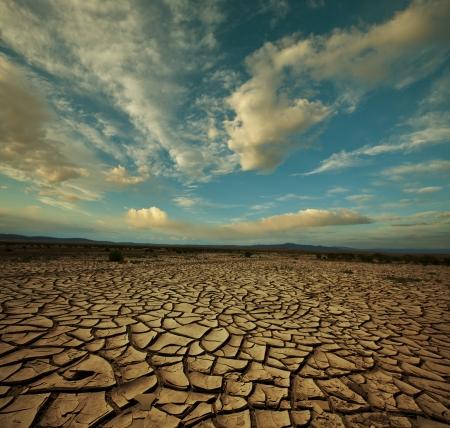sequias: La sequía de la tierra