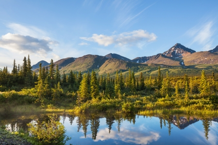 rivers mountains: river in tundra on Alaska Stock Photo